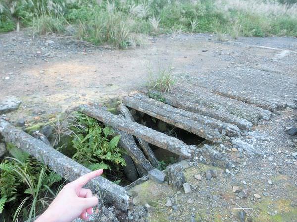 微旅行▲水湳洞-十三層遺址廢煙道▲美麗的芒草季節之旅